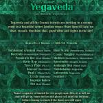 YEGAVEDA psychedelic experience